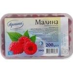 Fruit berry raspberry Artika frozen 200g