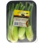 Vegetables fennel Mini fresh 200g