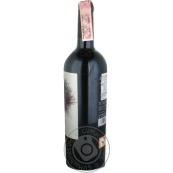 Вино Ego Bodegas Goru красное сухое 14% 0,75л - купить, цены на МегаМаркет - фото 2