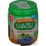 Puree Malenkoye schastye bog bilberry for children