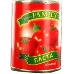 Tomato paste Family 30% 400g can China