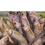 Риба плотва в'ялена