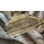 Рыба-игла Морские сушеная соленая