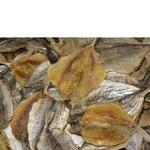 Ставридка Морские сушеная соленая