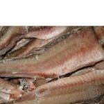 Риба хек заморожена