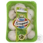 Сup mushrooms 500g Ukraine