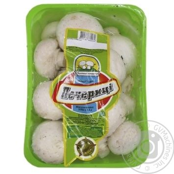 Packed up Mushrooms 500g - buy, prices for Furshet - image 1
