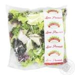 V-talia Rossa Verona Salad Mix, 1 Bag