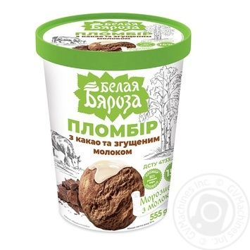 Belaya Byaroza Ice Cream with Cocoa and Condensed Milk 555g - buy, prices for CityMarket - photo 1