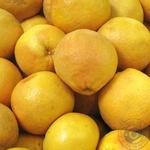 Фрукт цитрус грейпфрут червоне свіжа