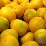 Fruit mellon fresh