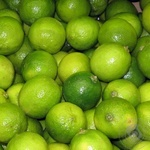 Фрукт цитрус лимон свежая