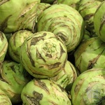 Овощи капуста кольраби свежая