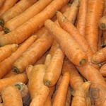 Овочі морква свіжа