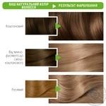 Garnier Color Naturals №7.1 Hair dye - buy, prices for Novus - image 5