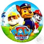 Игровой мяч Blaze Paw Patrol  23см в ассортименте