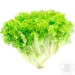 Lollo Bionda Green Salad by Weight
