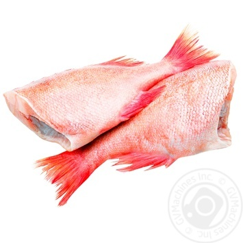 Frozen Headless Red Perch by Weight
