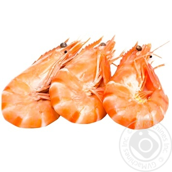 Boiled and Frozen Shrimp with Head without Glaze
