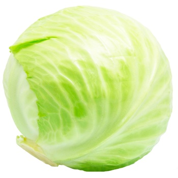 Cabbage - buy, prices for Metro - photo 1