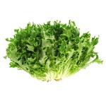 Салат фрізе кг