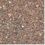 Приправа чорний перець чорне горошок Україна
