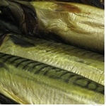 Fish atlantic mackerel Shelf whole Ukraine