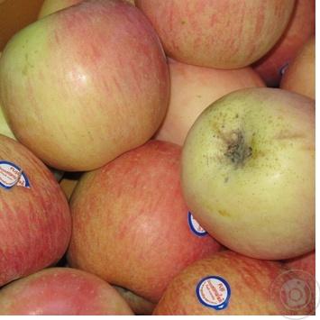 Фрукт яблука фуджі свіжа Україна