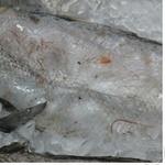 Рыба треска замороженная Украина