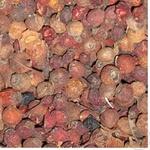 Сухофрукти ягода шипшина сушена Україна