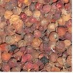 Dried fruits crataegus rose hip dried Ukraine
