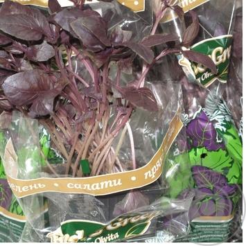 Зелень базилик Фреш энд грин фиолетовая свежая в горшках Украина