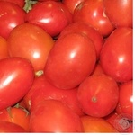 Овощи помидор сливка свежая Украина