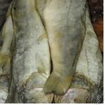 Риба судак Шельф в'ялена Україна