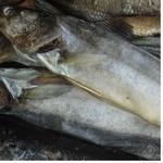 Fish pike perch sun dried Ukraine