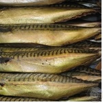 Fish atlantic mackerel Shelf gutted Ukraine