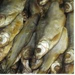 Fish common roach Shelf sun dried Ukraine