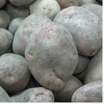 Овочі картопля свіжа Україна