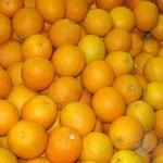 Апельсин Египет