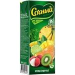 Sochny Multifruit Nectar 0,2l