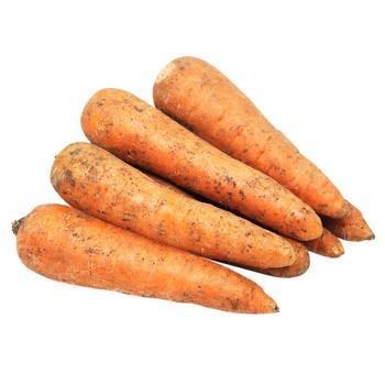 Морква кг - купити, ціни на Метро - фото 1