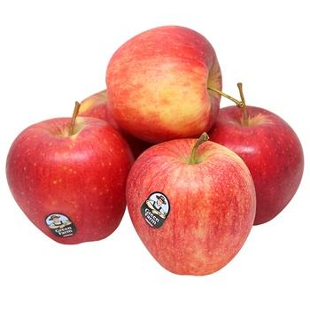Apple Jonagored Organics