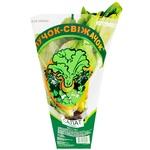 Puchok-Svizhachok Fresh Greens Romaine Lettuce 180g