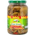 Dolina jelaniy pickled stubby-stalk mushrooms 1700ml
