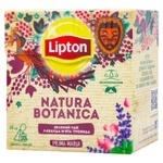 Lipton Natura Botanica Lavender Mint Rose Green Tea 20pcs*1g
