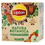 Lipton Natura Botanica Rose Hip Apple sea Buckthorn Mint Fruit And Berry Mixture 20pcs*1.6g
