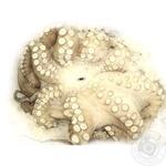 Seafood octopus fresh