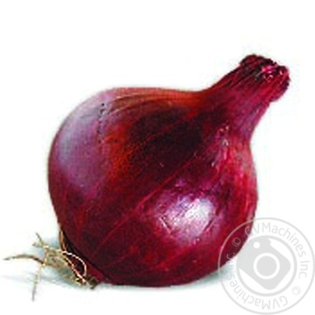 Red onion - buy, prices for Novus - image 2