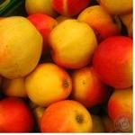 Яблуко червоне діаметр 75+ Польща