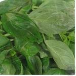 Greens basil Ukrprom-sintez fresh 70g Ukraine